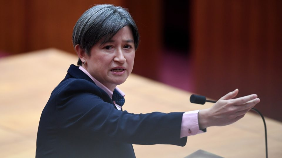 Labor's Penny Wong gave an emotional speech against the gay marriage plebiscite
