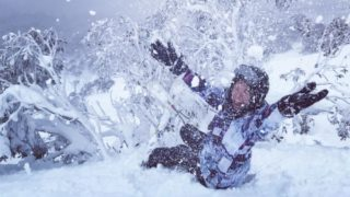 thredbo website crash skiing
