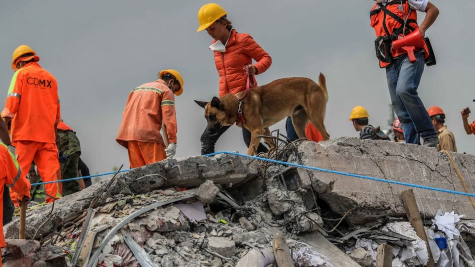 Mexico earthquake rescue