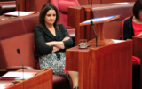 "Senator Jacqui Lambie is looking for ""people with at least half a spine"" to stand for her party in the next state election."