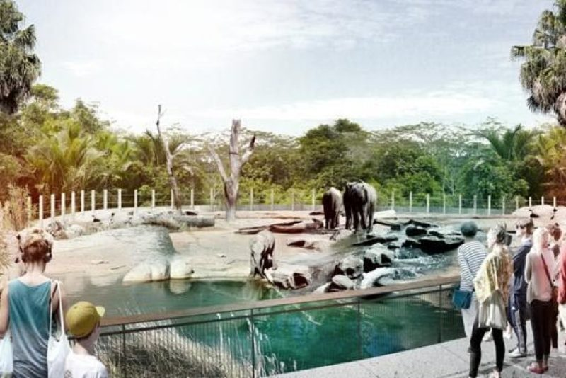 South East Asian zoo exhibit