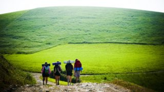 Walking the Camino track