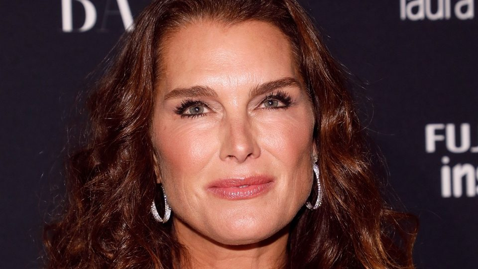 Brooke Shields Reveals Donald Trumps Pick Up Line