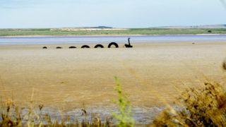Lochiel Ness Monster