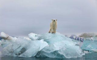 climate change sceptics