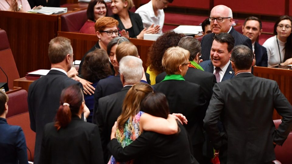 Same-sex marriage bill passes Senate