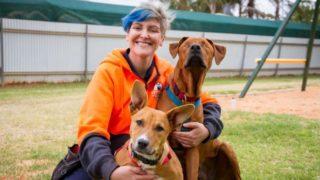 blind-puppy-rescue-dog