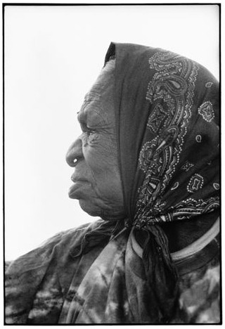 Emily Kame Kngwarreye earth's creation, aboriginal art auction