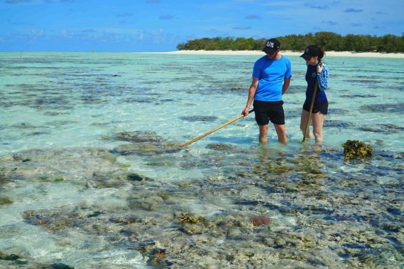 British tourists walk on the reef
