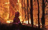 Firies battle blaze
