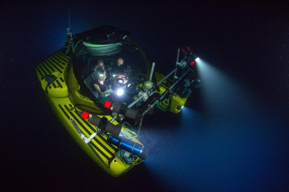 BBC Earth Blue Planet II bluntnose sixgill shark
