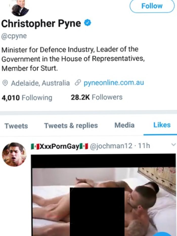 Christopher Pyne says he was hacked after his Twitter account liked a pornographic post.