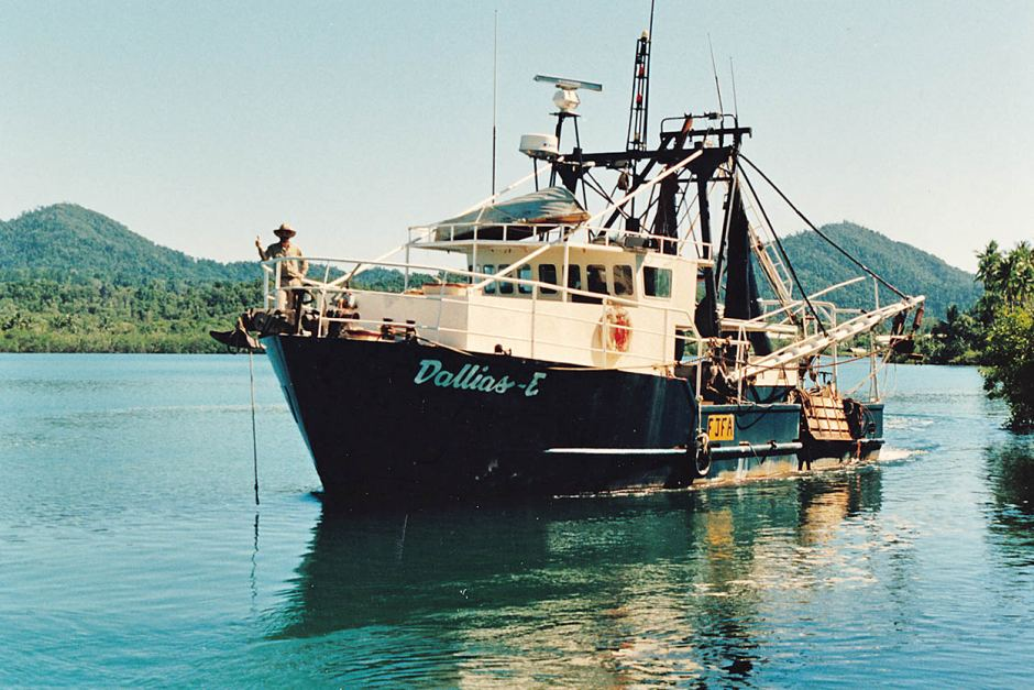 The prawn trawler, Dallias E, which sank 50 nautical miles north east of Townsville and is today a recognised deep dive site.
