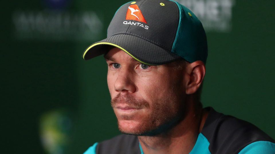 David Warner cleared to play Premier cricket in Sydney