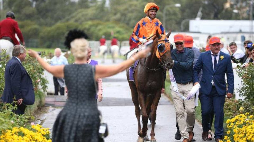 Stakes Day 2017 tips