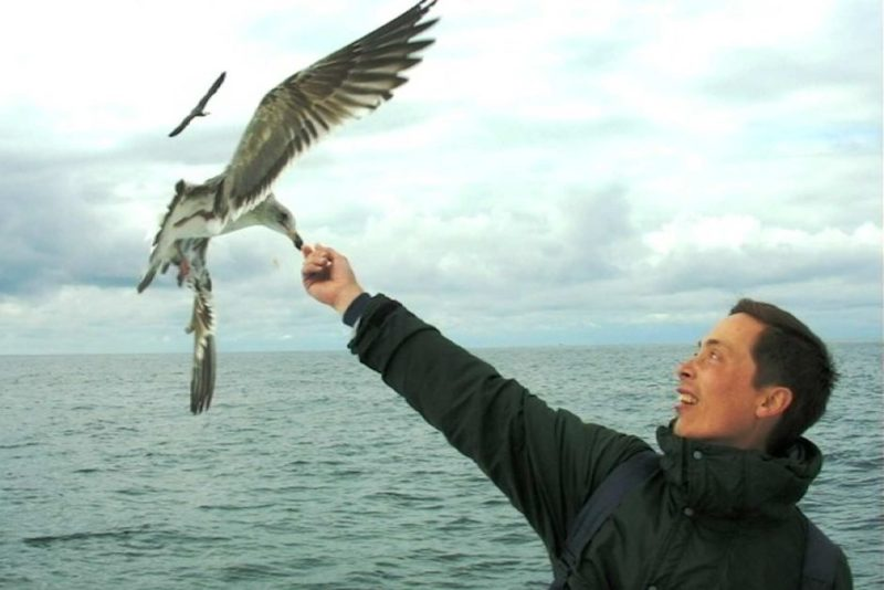 Michael Lee feeding a seagull