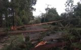 Residents inspect the damage on the Sunshine Coast after a storm tore through southeast Queensland.