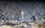 Firefighters have got a grassfire in Cheltenham Park under control.