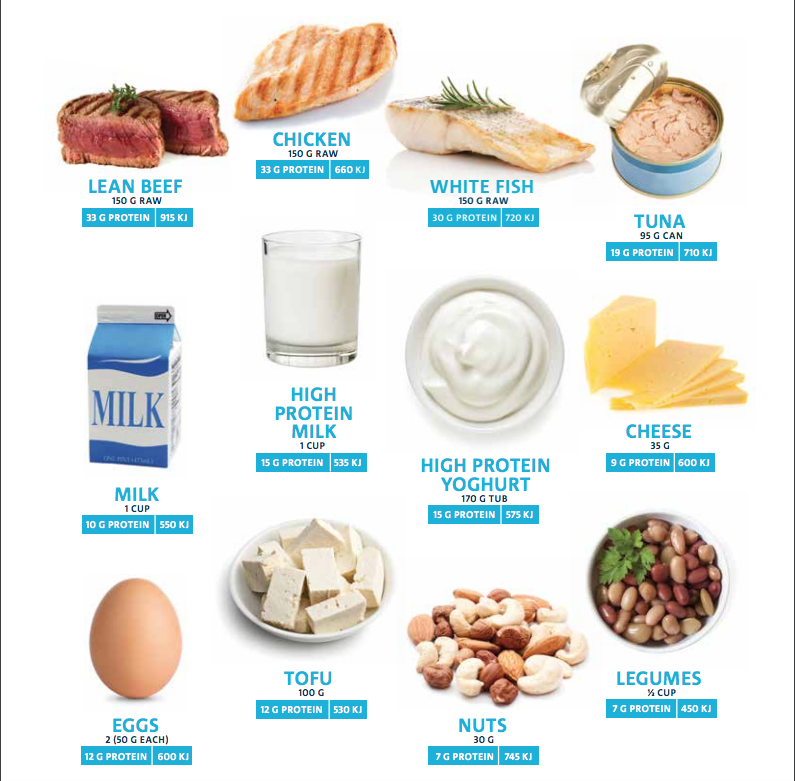 Protein – Which is Best?