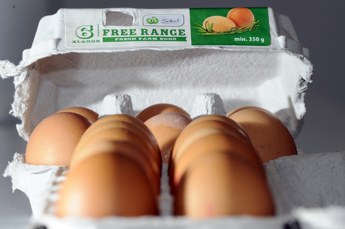 free-range-eggs-Woolworths