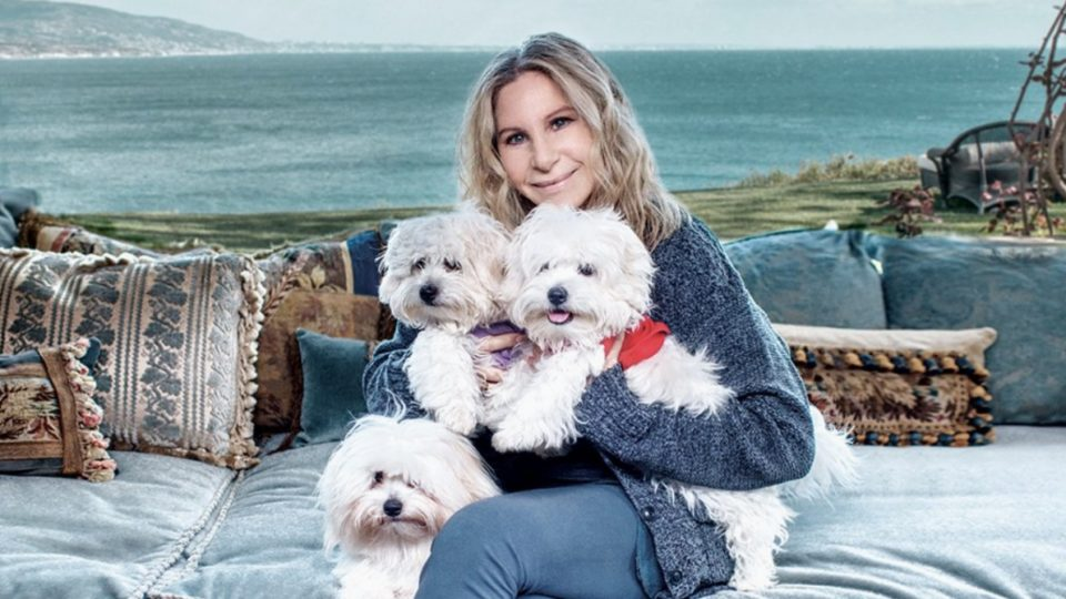 Barbra Streisand reveals she cloned her dog to create two new pets