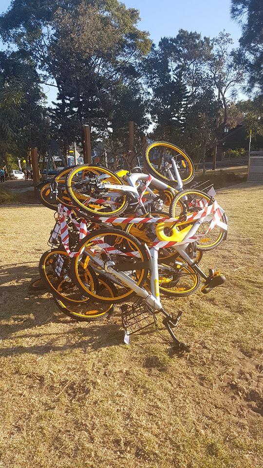 share dockless bikes waverley council