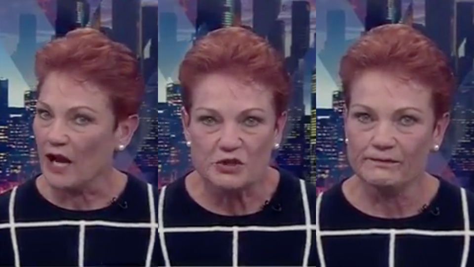 Pauline Hanson facing One Nation revolt over tax cuts
