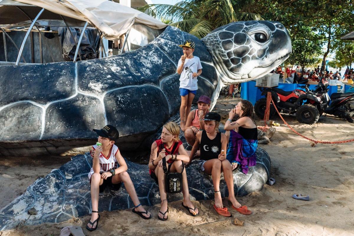 sea turtles kuta beach