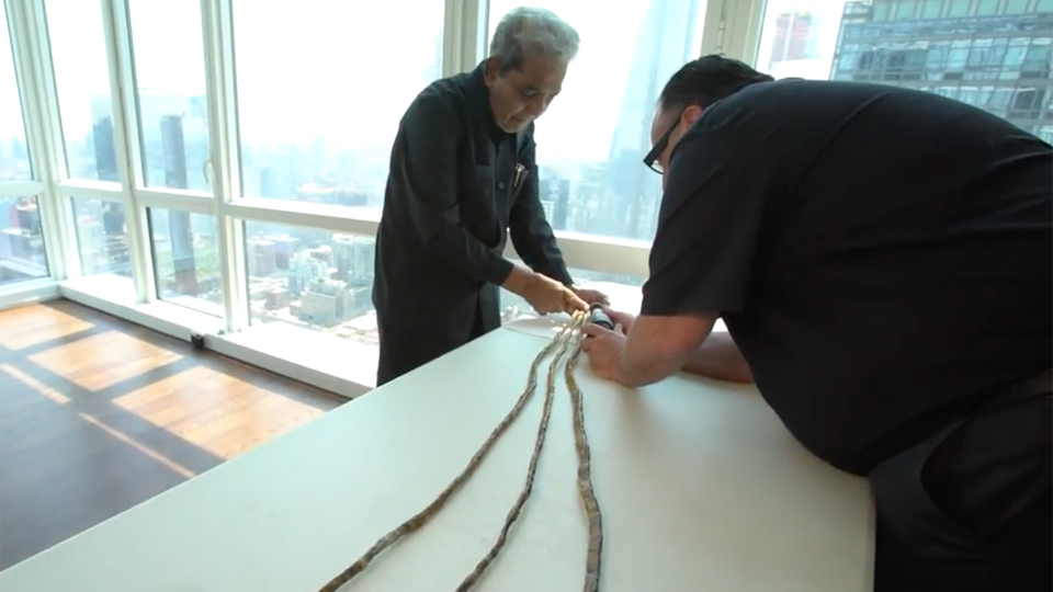 Man with world\'s longest fingernails cuts them off after 66 years