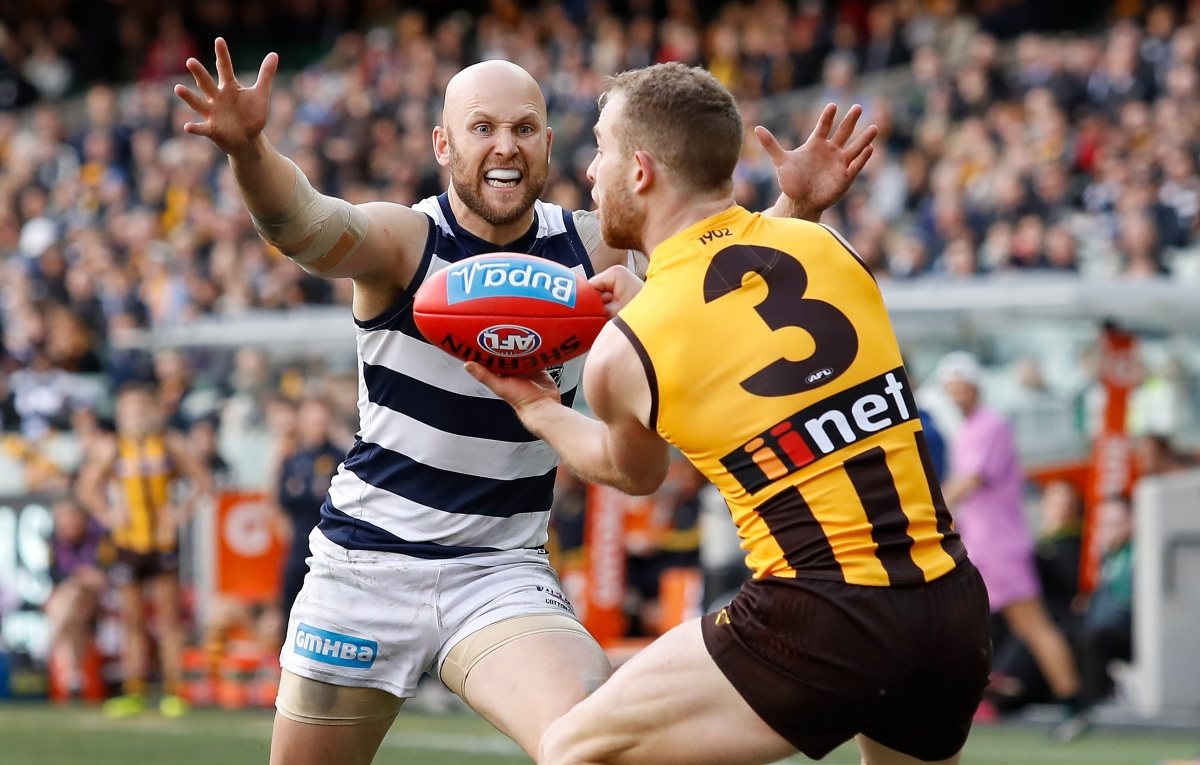 afl round 21 hawthorn geelong