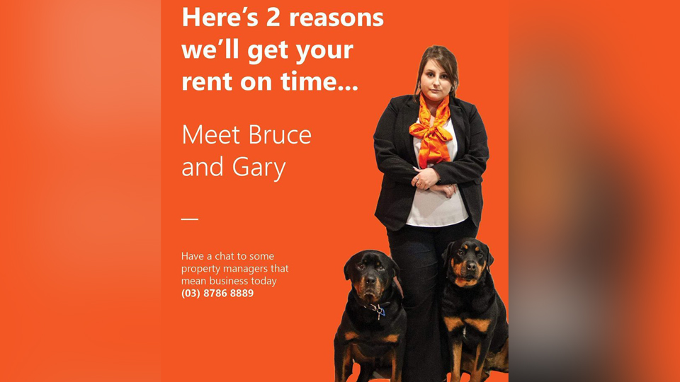 Renters Threatened With Rottweilers In Real Estate Ad