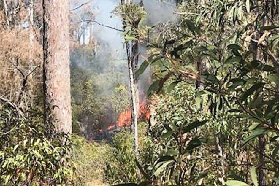 qld bushfire