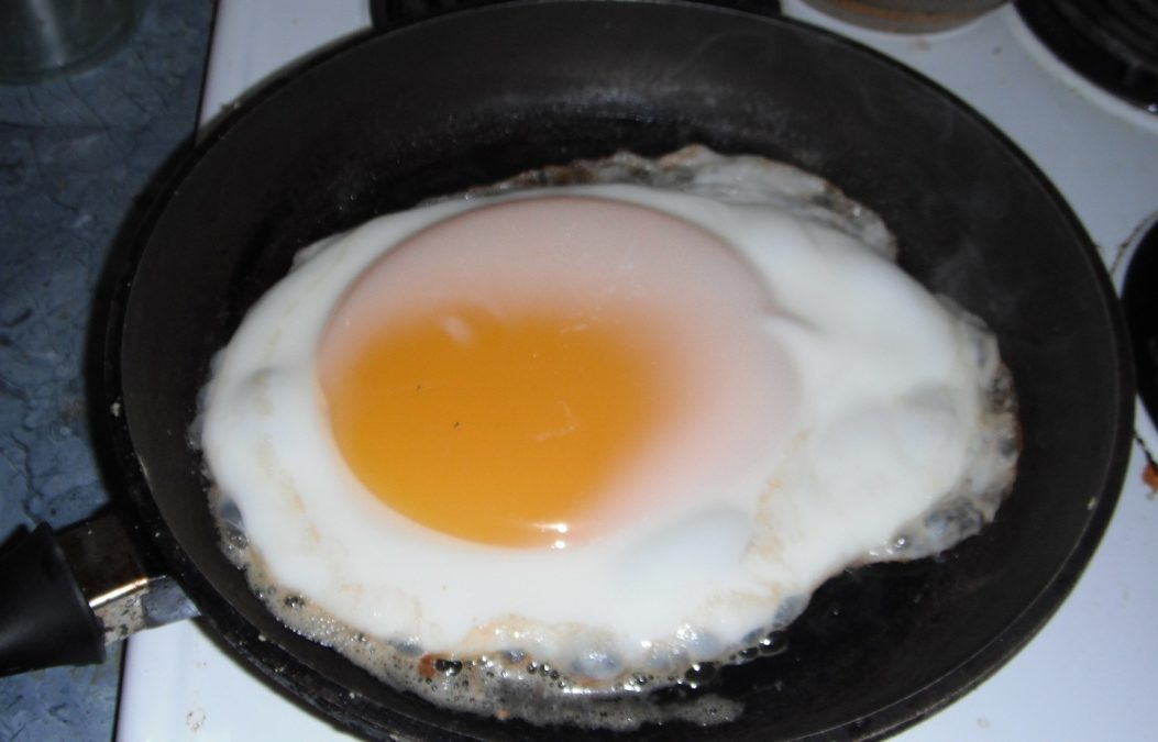 emu-egg-fried-pan