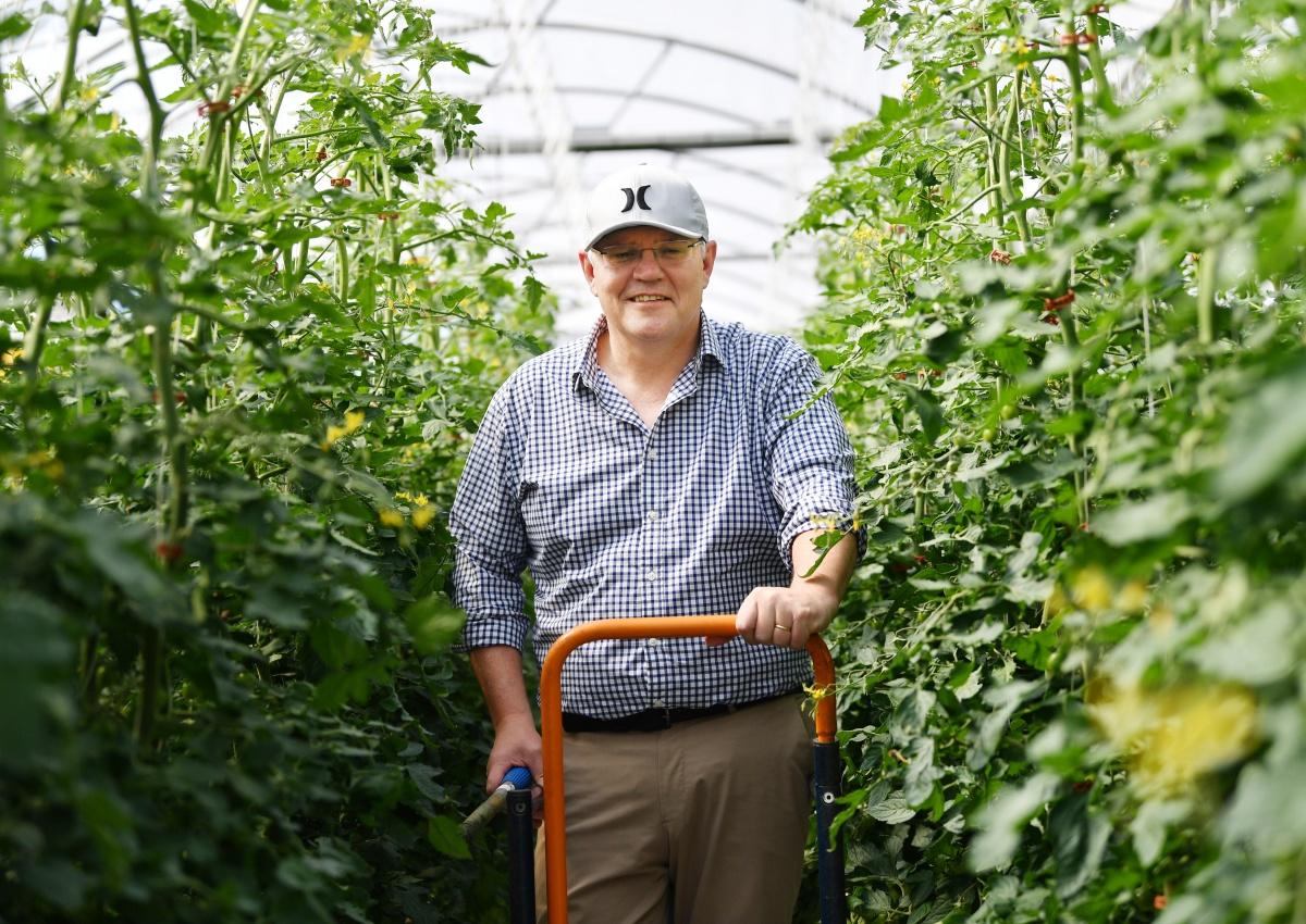 visas changed to help farmers