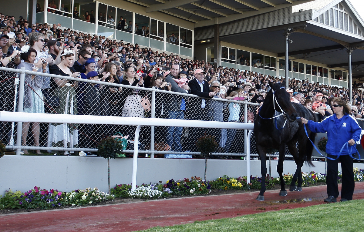 Newsmakers of 2013, Black CAviar