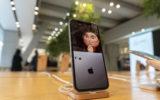 apple sales revenue