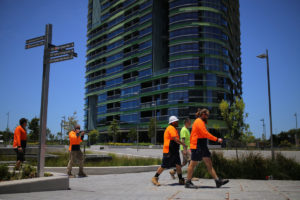 Construction workers survey the Opal Tower in Sydney's Olympic Park.