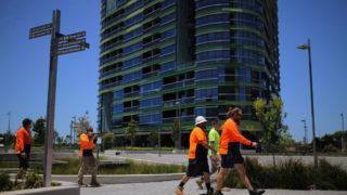 opal tower builder sue engineer