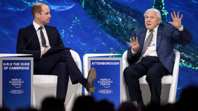 Prince William, David Attenborough share Davos stage