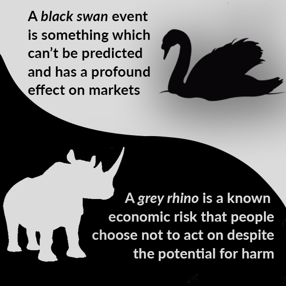 A rhino and a swan.
