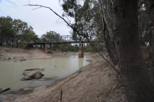 murray darling mismanagement