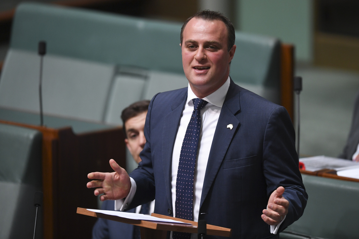 tim wilson in hot water over inquiry