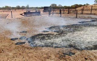 mount denison burning ground
