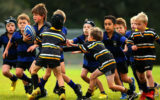 kid's rugby concussion