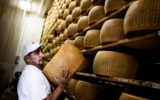 A man hoists a wheel of parmesan cheese on to a shelf.
