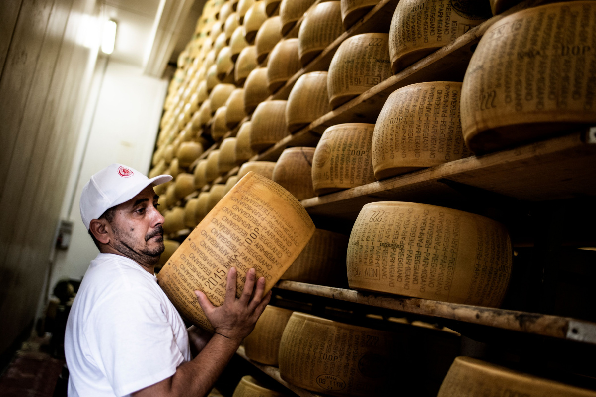 A man hoists a wheel of parmesan cheese on to a shelf.