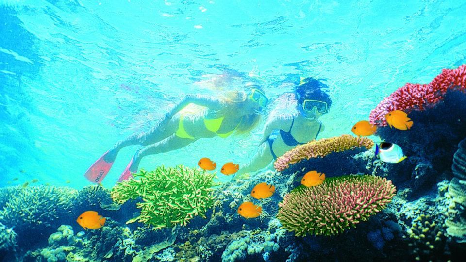 barrier reef budget