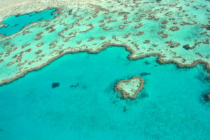 barrier reef budget