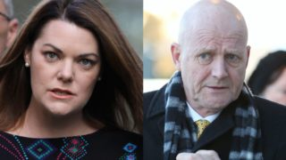 leyonhjelm hanson young appeal