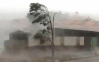 cyclone veronica pilbara